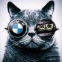 BMW e60 520d nu mai are putere - last post by sbircris